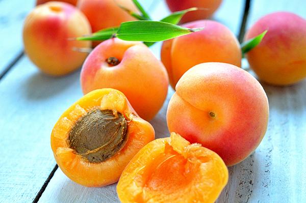 apricots mom sitness heaven