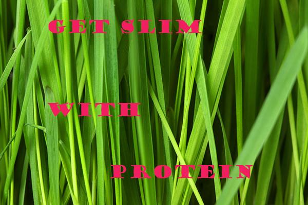 protein momsfitnessheaven