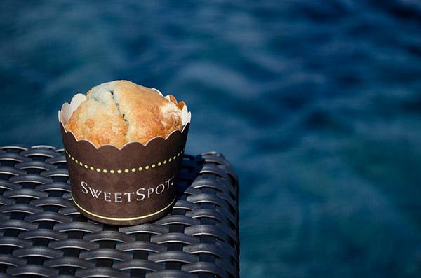 muffin momsfitnessheaven