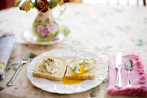 eggs in